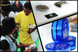 GeaSeeds en Expogrow 2016