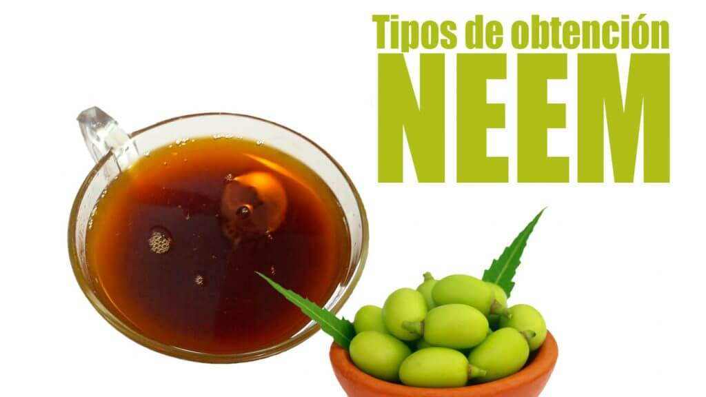 neem remedio natural