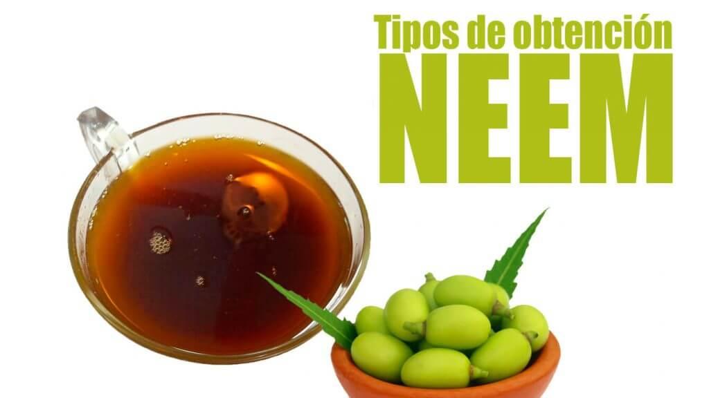 Tipos de extracción neem