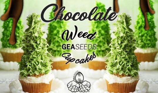 chocoweed cupcake