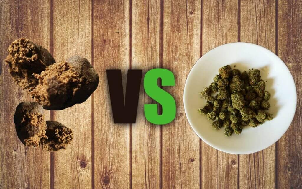 haschisch vs marijuana