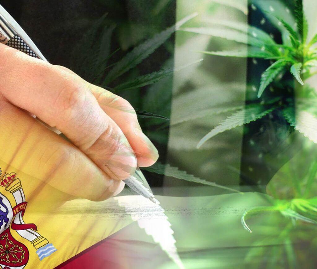 marijuana in Spain