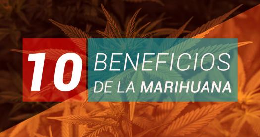 10 BENEFICIOS DE LA MARIHUANA