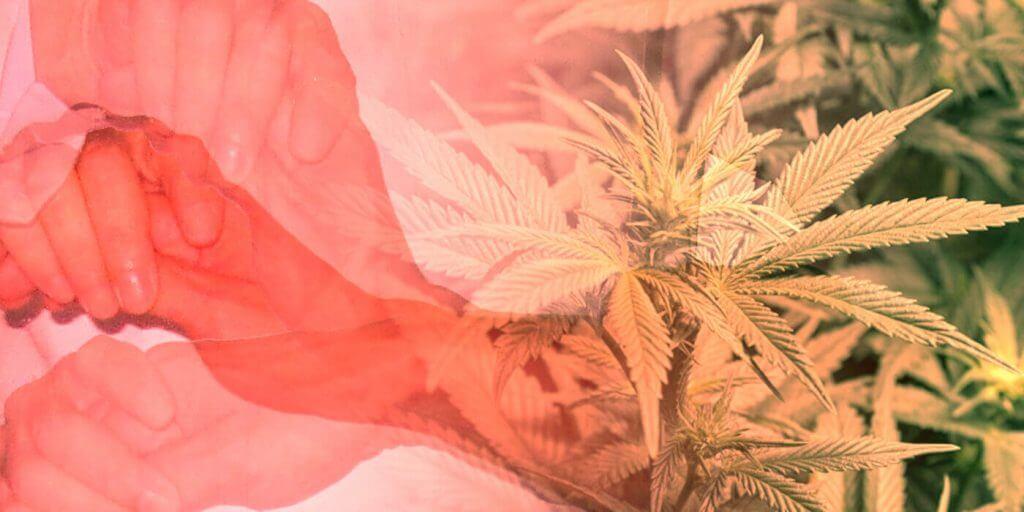 Beneficios de la marihuana para Enfermedades del movimiento