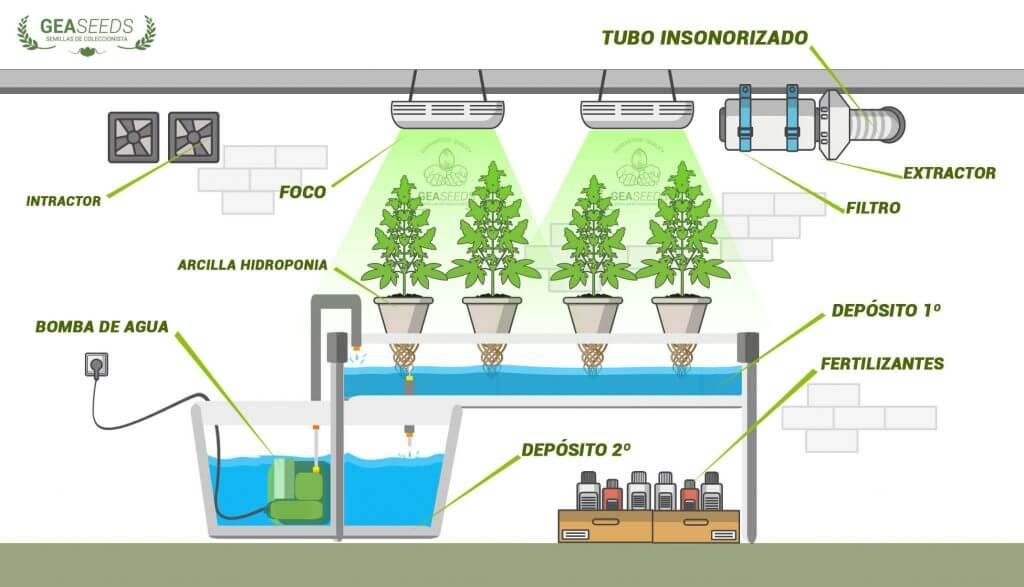 como preparar un cultivo hydroponico