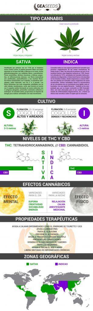marihuana tipos