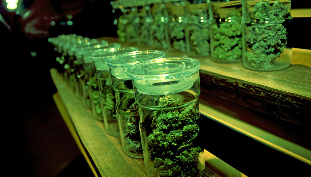 club cannabis