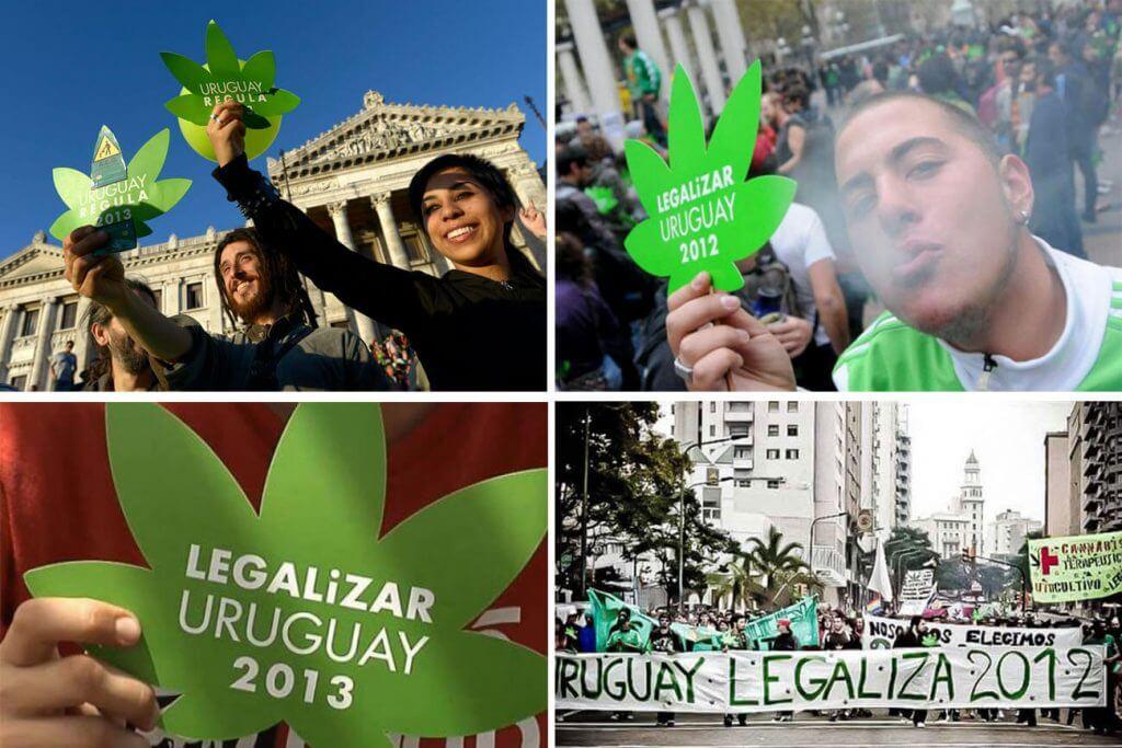 marihuana uruguay1