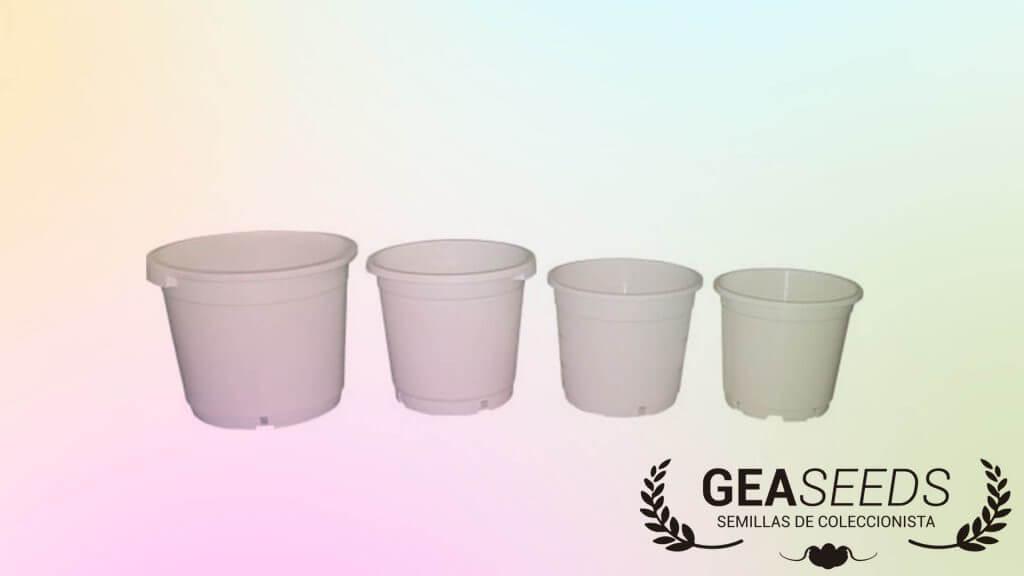 White square or round pot