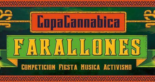 Copa farallones2