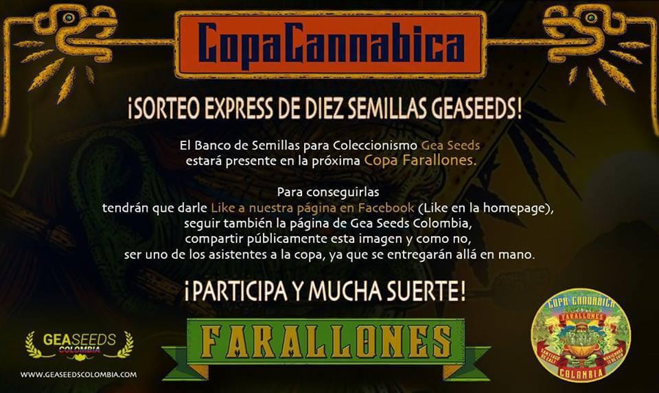 Copa farallones3
