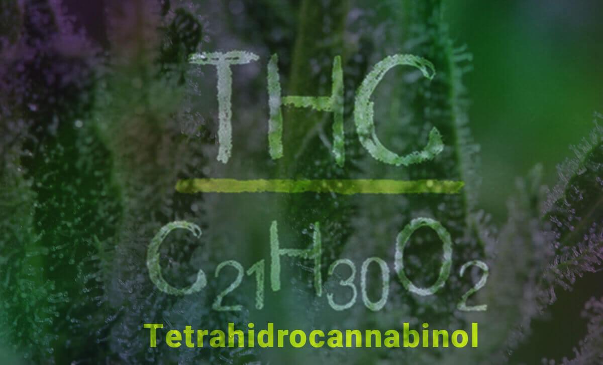 tetrahidrocannabinol THC