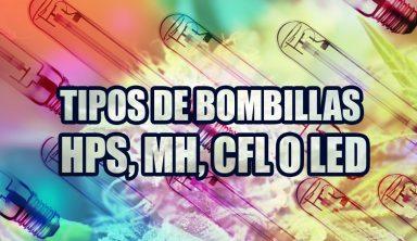 TIPOS DE BOMBILLAS PARA CULTIVO DE MARIHUANA (HPS, MH, CFL O LED)
