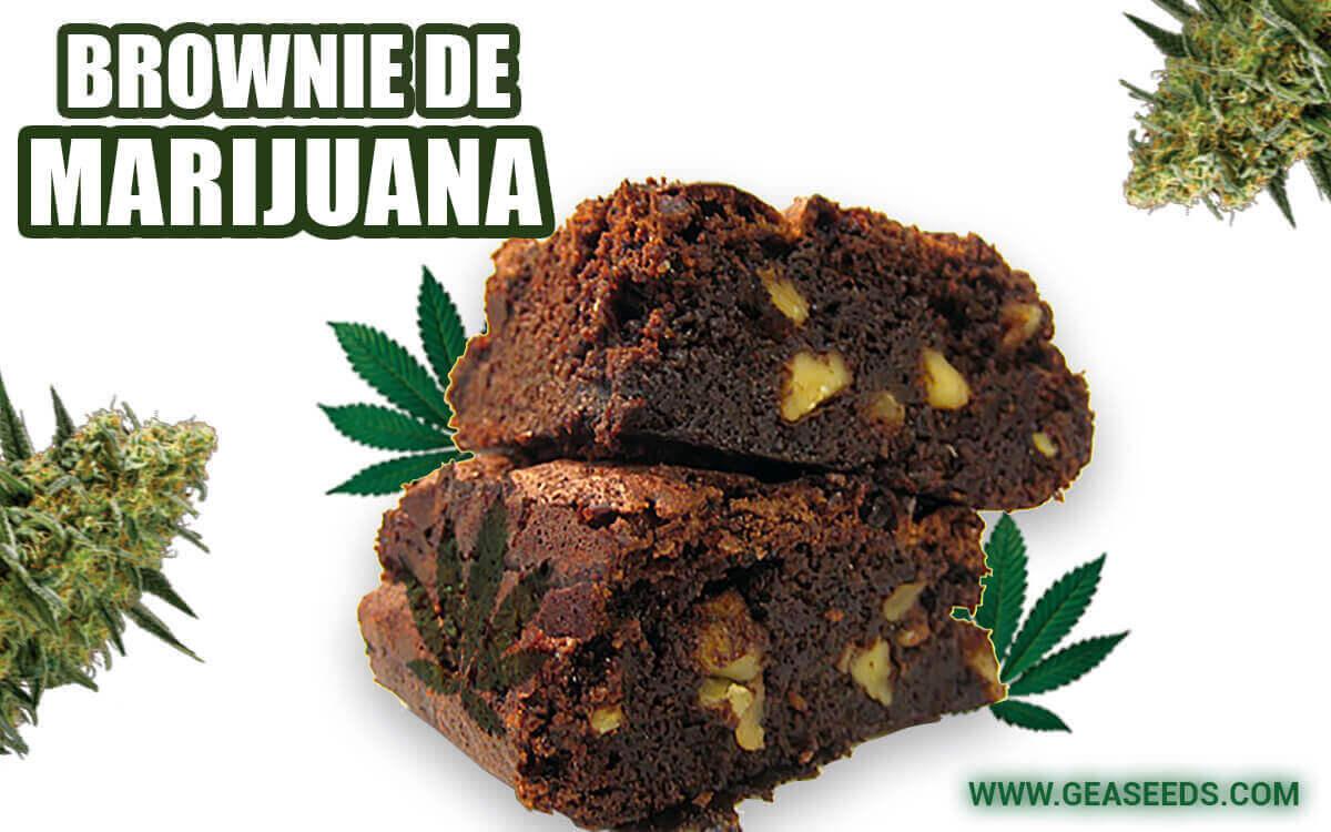 Brownie de Marijuana
