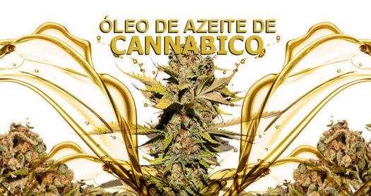 oleo-azeite-cannabico