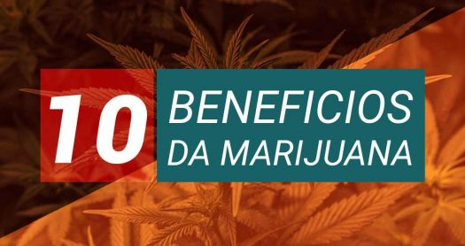 Benefícios da marijuana antiemética