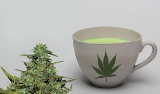 Infusión de Marihuana