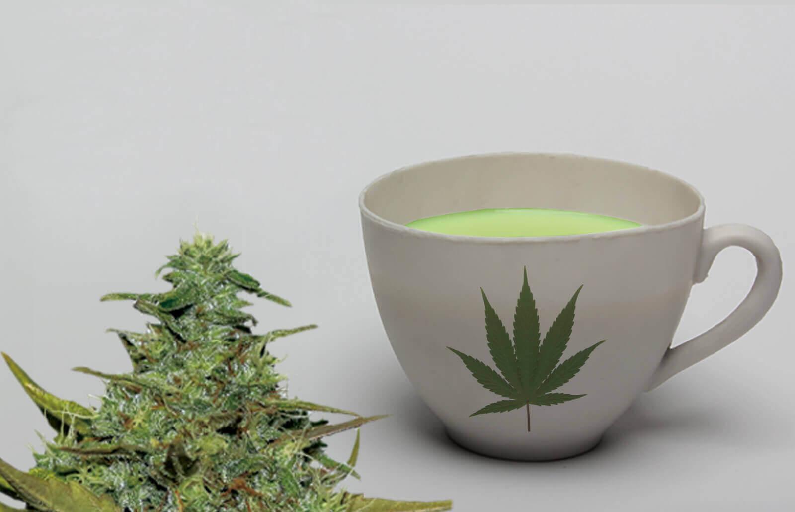 marijuana infusion