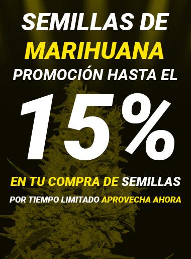 Oferta semillas de marihuana