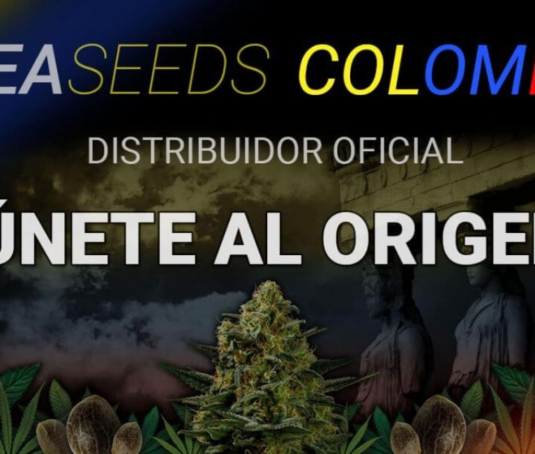 Gea Seeds Colombia