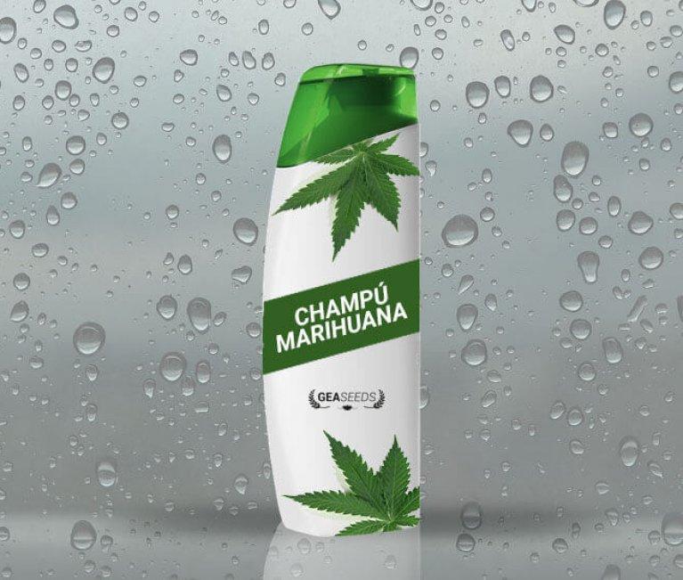 champú de marihuana