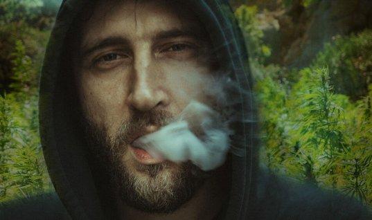 efectos del cannabis en el cuerpo humano