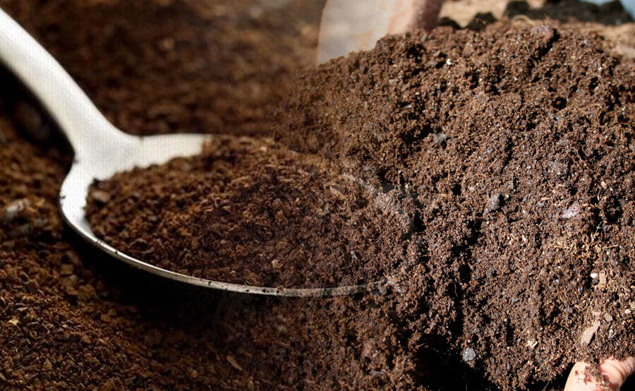 Fertilizer and coffee