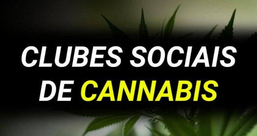 Clubes sociais cannabis
