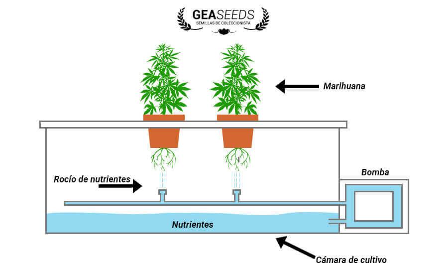 Estructura cultivo aeropónico