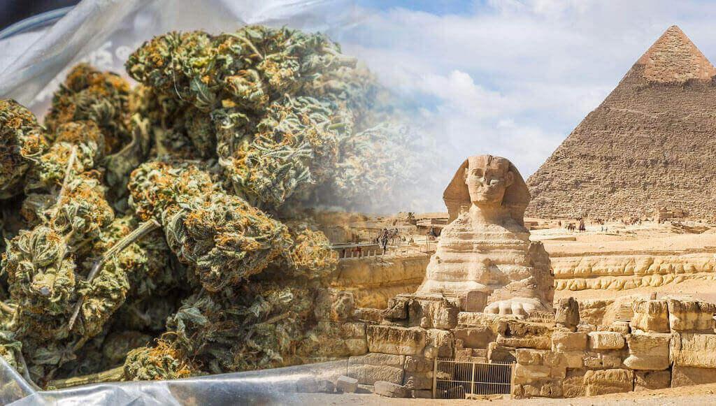 Egipto y marihuana