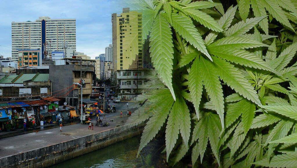 Marihuana en Filipinas
