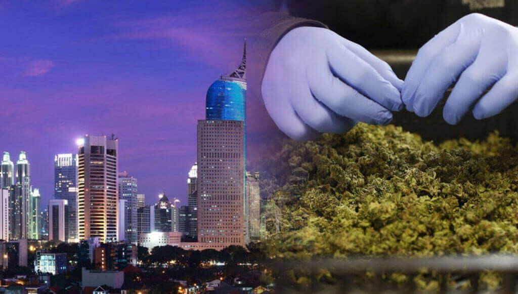 indonesia marihuana