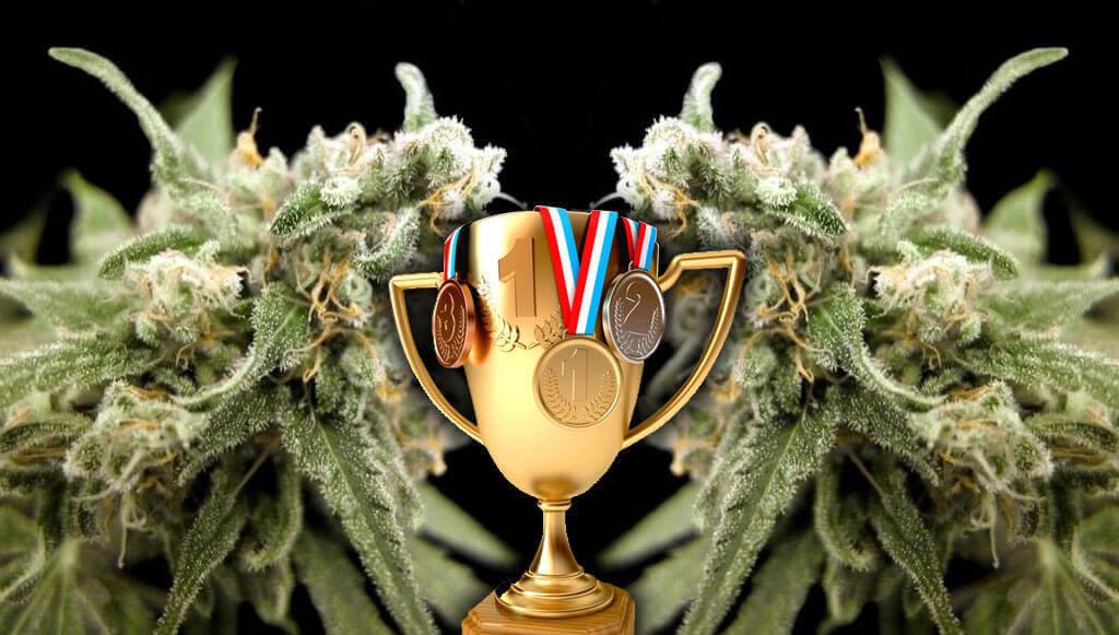 Trofeos Kritikal