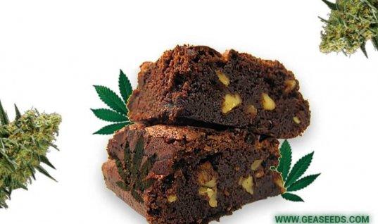 Brownie Cannabis