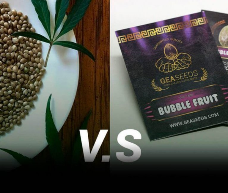 seeds in bulk or packaged