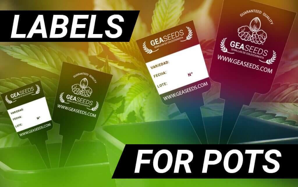 Labels for pots