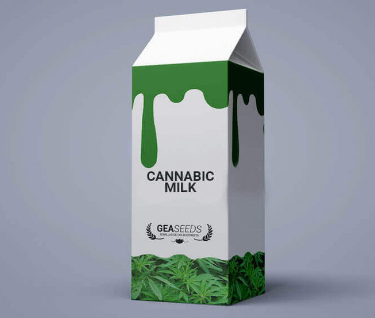 HOW TO MAKE WEED MILK