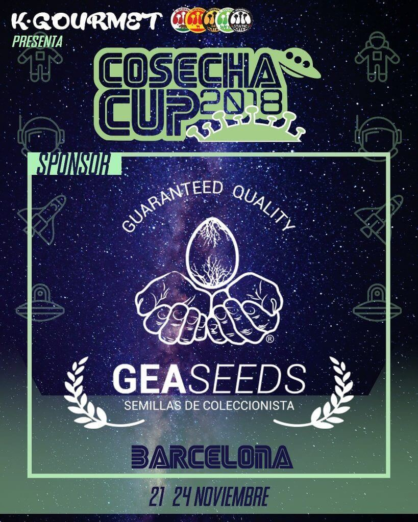 cosecha cup gea seeds