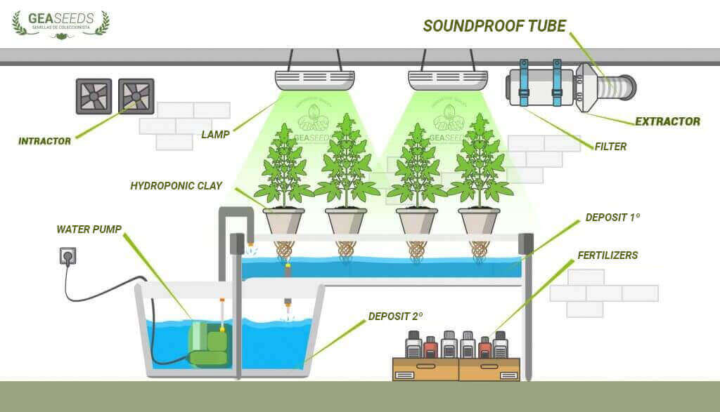 How to assemble hydroponic system for weed, complete guide