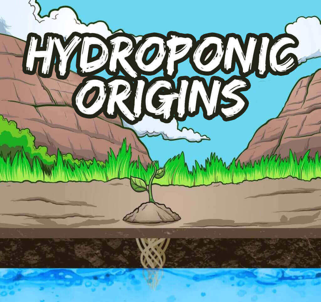 origins of hydroponic cultivation