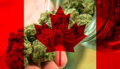 marihuana y canadá