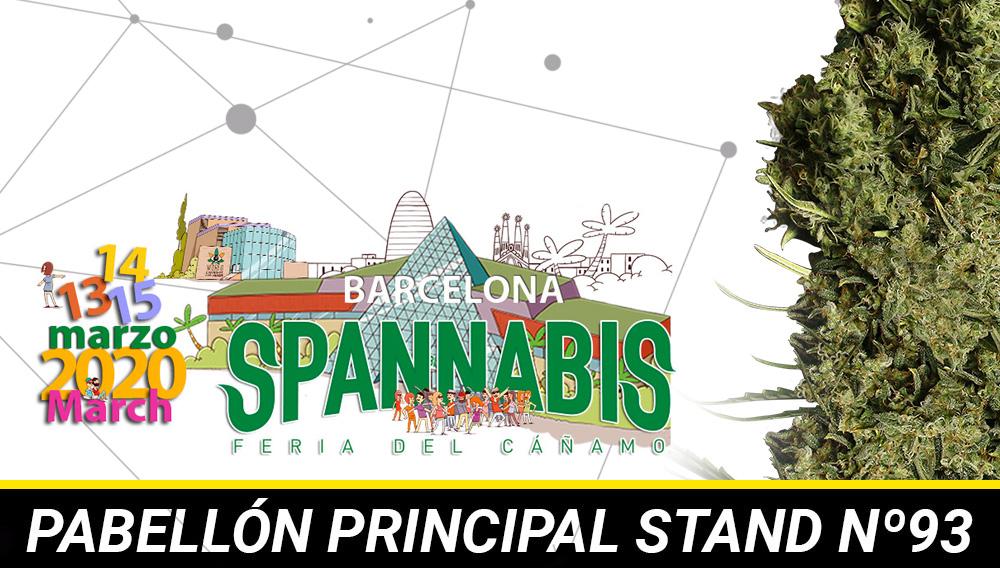 spannabis barcelona 2020
