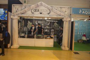 stand gea seeds spannabis