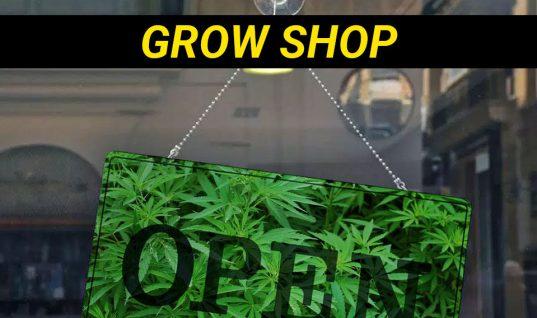 abrir grow shop