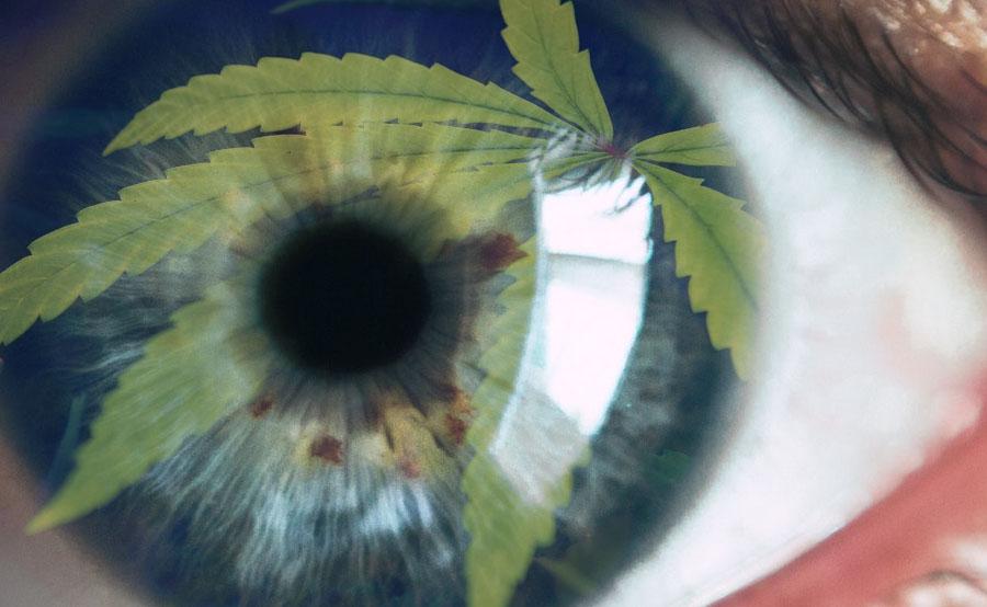 marijuana eye