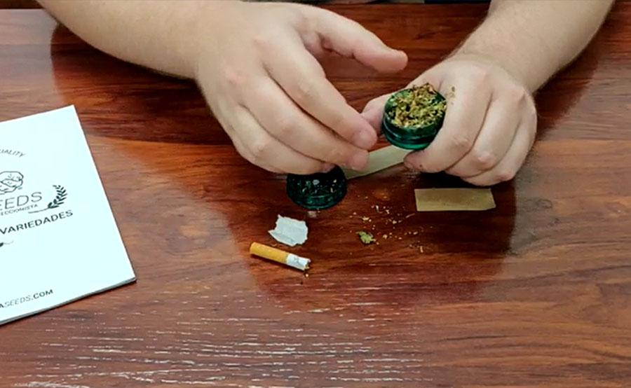Tritura la marihuana con el grinder