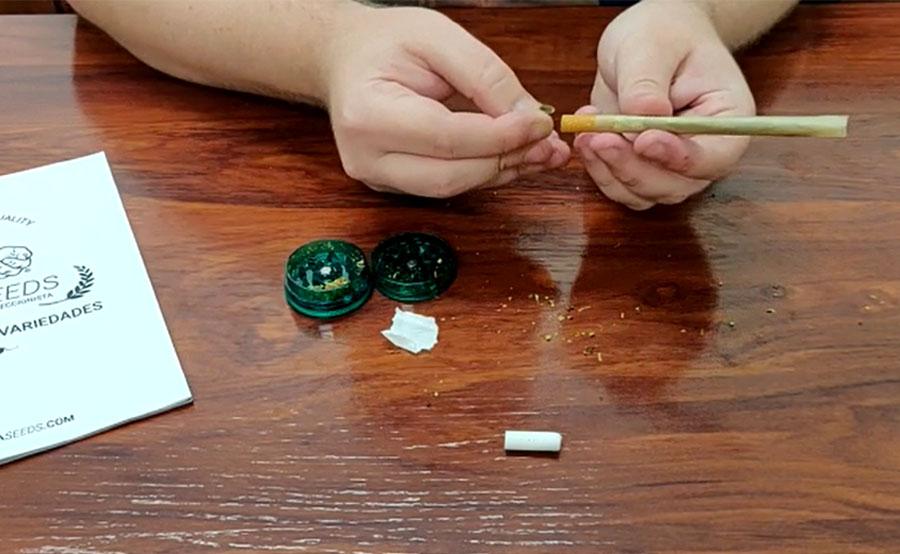 Sustituir esponja tabaco industrial por cartón