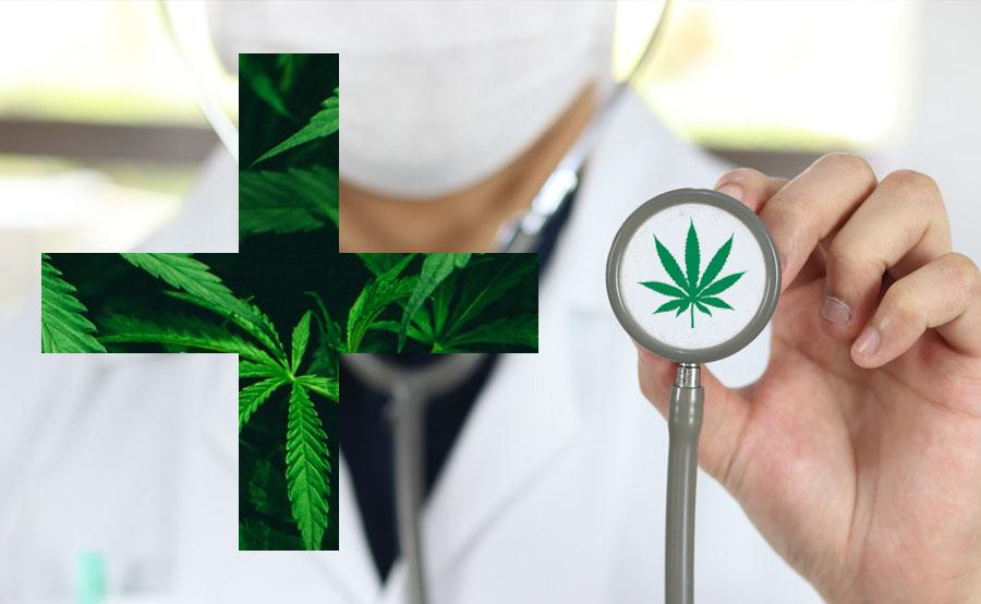 médico y marihuana