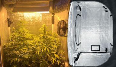 armario de cultivo