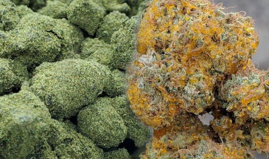 MOON ROCKS Y SUN ROCKS DE CANNABIS ¿QUÉ SON?